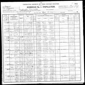 A Page from the 1900 US Federal Census