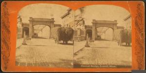 Central Bridge, 1882